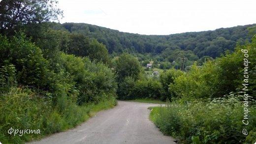 Начало лесной дороги в июле фото 8