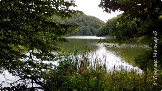 Начало лесной дороги в июле фото 31