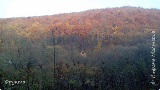 Начало лесной дороги в июле фото 12