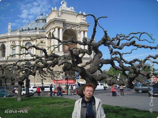 Доброго времени суток, Мастера и Мастерицы! Вы когда-нибудь бывали в Одессе?  Мне посчастливилось побывать в этом прекрасном городе, где каждый камень дышит историей. Хочу с вами поделиться впечатлениями об этом городе. фото 40
