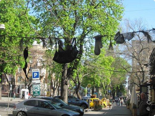 Доброго времени суток, Мастера и Мастерицы! Вы когда-нибудь бывали в Одессе?  Мне посчастливилось побывать в этом прекрасном городе, где каждый камень дышит историей. Хочу с вами поделиться впечатлениями об этом городе. фото 80