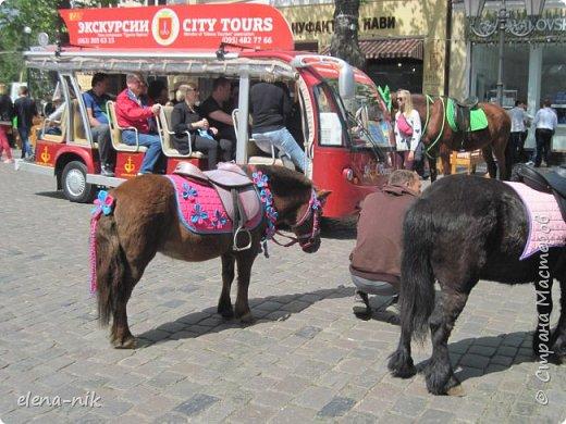 Доброго времени суток, Мастера и Мастерицы! Вы когда-нибудь бывали в Одессе?  Мне посчастливилось побывать в этом прекрасном городе, где каждый камень дышит историей. Хочу с вами поделиться впечатлениями об этом городе. фото 70