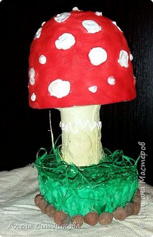 Основой для грибов послужили различные части  пластиковых бутылок. фото 4
