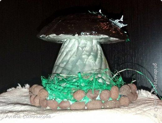 Основой для грибов послужили различные части  пластиковых бутылок. фото 2