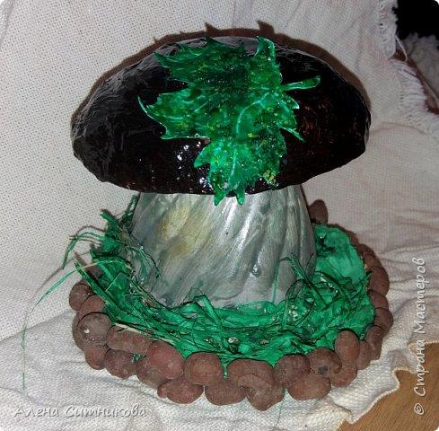 Основой для грибов послужили различные части  пластиковых бутылок. фото 1