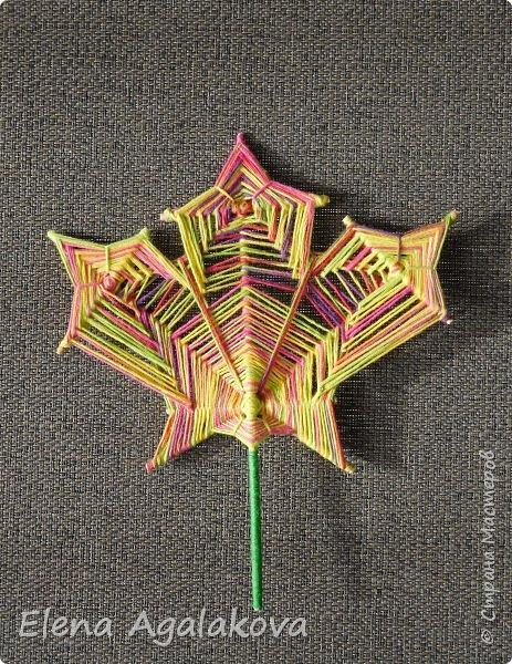 Выкладываю сегодня МК по плетению Кленового листа - мандалы. Это полностью моя находка. Просто захотелось сплести кленовый лист и пошел творческий процесс и импровизация, в результате появился такой кленовый листик. фото 1