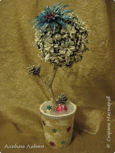 Кофейное деревце, использованы так же скорлупки от фисташек. фото 6