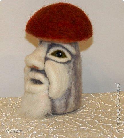 грибочки эмоциональные фото 3