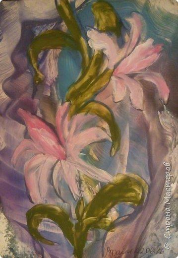 Лилии. фото 1