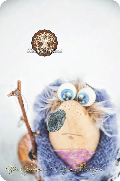 Ежик Гай живет в лесу Шамана в долине Еловых лап. Он торопится на вечеринку в стиле «Алиса в Стране чудес». Любит кушать мох с медовыми пылинками из любимой кружечки. А еще у него есть необычный гриб с горы Ветров! Это гриб Люминор. Кристаллы на шляпке гриба ночью светятся. фото 14