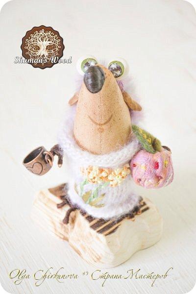 Ежик Гай живет в лесу Шамана в долине Еловых лап. Он торопится на вечеринку в стиле «Алиса в Стране чудес». Любит кушать мох с медовыми пылинками из любимой кружечки. А еще у него есть необычный гриб с горы Ветров! Это гриб Люминор. Кристаллы на шляпке гриба ночью светятся. фото 8
