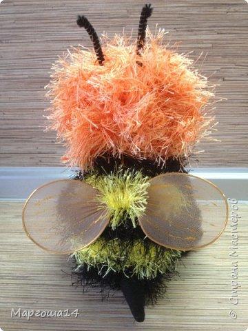 Привет,Страна Мастеров!!! Сегодня я к вам пришла с семейкой пчёл. Тельца пчёлок связаны из пряжи-травка.Ручки-ножки из проволоки,которая обмотана полосками искусственного меха,можно сгибать-разгибать,как захочешь. Рост пчёлок(без ножек) от 20 см до 14 см. фото 3