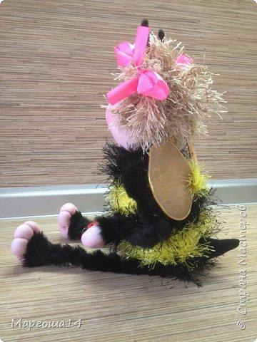 Привет,Страна Мастеров!!! Сегодня я к вам пришла с семейкой пчёл. Тельца пчёлок связаны из пряжи-травка.Ручки-ножки из проволоки,которая обмотана полосками искусственного меха,можно сгибать-разгибать,как захочешь. Рост пчёлок(без ножек) от 20 см до 14 см. фото 5