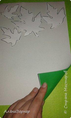 Рамка для фотографии формата 15*21. Очень просто, эстетично и практично. фото 3