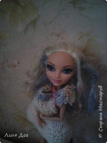 Давайте знакомиться. Я-Клементина. Урождённая Дарлинг Чарминг. Люблю сладкое, вязанную одежду и животных. фото 1