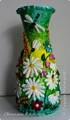 """Здравствуйте! Сегодня я с декоративной вазой папье-маше, ее высота 26 см. Для декора использовала: клей """"Титан"""", два вида семян подсолнуха, фасоль, зерна кофе (серединки у ромашек), черный перец горошком (глаза у стрекозы, букашки), скорлупу от фисташек, шпагат.Вся ваза покрыта акриловым глянцевым лаком. фото 14"""