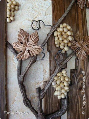 Эту красоту творил мой брат, а я дополнил виноградной лозой. фото 4