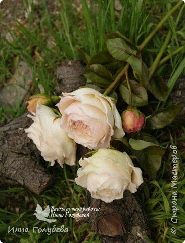 Английские розы из холодного фарфора. фото 7
