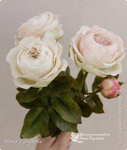 Английские розы из холодного фарфора. фото 4
