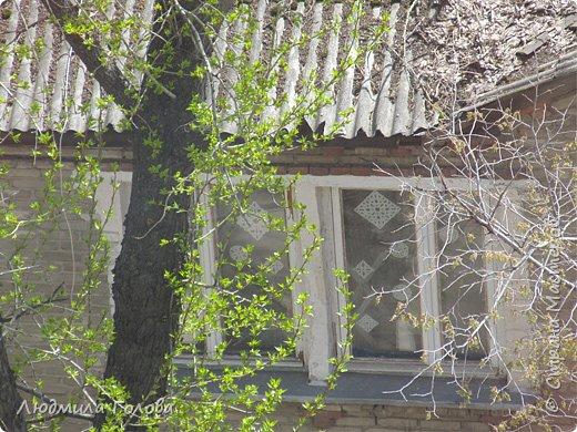 Декор окна к 9 мая. фото 4