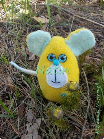 В этом году героем нашей итоговой выставки стала МЫШКА!!!!!! Витаминка Автор Юсупова Алсу 9 лет фото 1