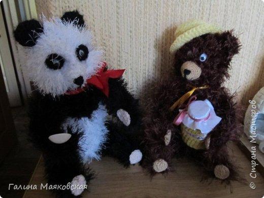Привет всем! А у нас медведей прибыло!  Наш бурый пытается приучить панду к меду  в связи с отсутствием бамбука  на огороде.  А  у панды в лапе ложка , а в глазах  нерешительность. фото 1