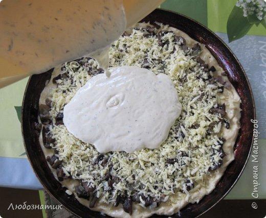 Добрый вечер  друзья и гости сайта! Сегодня хочу поделиться с вами очередным рецептом пирога.  Это один из моих любимых пирогов!   Рецепт:  Для теста: 100 г сливочного масла или маргарина 0,5 стакана сметаны 0,5 чайной ложки соды, погашенной уксусом 1,5 стакана муки  Для начинки: вареные грибы лук репчатый сыр  Для заливки: 1 стакан сметаны 1 яйцо 2 столовые ложки муки соль, перец по вкусу зелень (укроп, петрушка)  фото 16