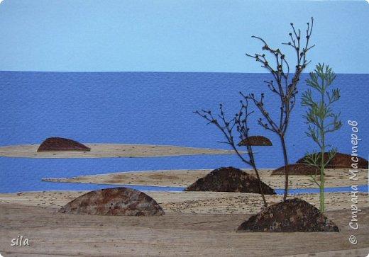 В последнее время увлеклась композициями из засушенных листьев. В лес хожу как в магазин. Попался кусочек сосновой коры, похожий на скалу. Получилась такая композиция - скалистый берег Валаама из летних впечатлений, прекрасное местечко. фото 6