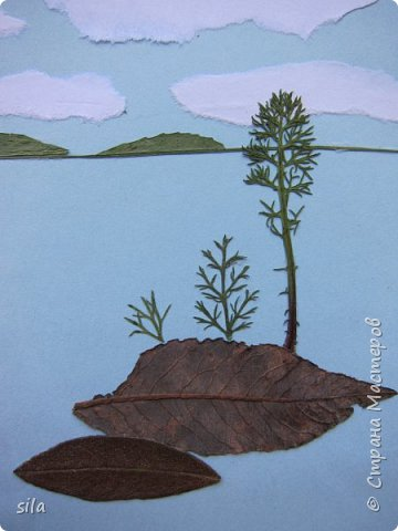 В последнее время увлеклась композициями из засушенных листьев. В лес хожу как в магазин. Попался кусочек сосновой коры, похожий на скалу. Получилась такая композиция - скалистый берег Валаама из летних впечатлений, прекрасное местечко. фото 2