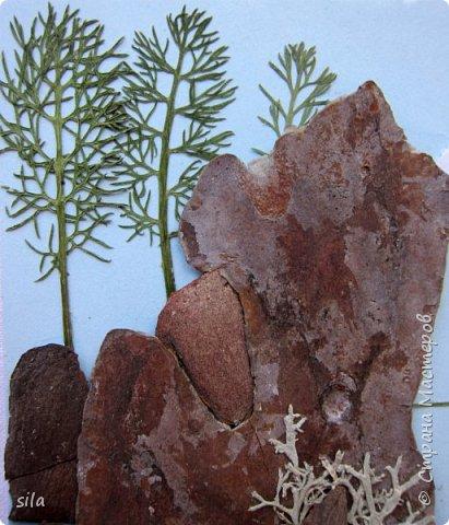 В последнее время увлеклась композициями из засушенных листьев. В лес хожу как в магазин. Попался кусочек сосновой коры, похожий на скалу. Получилась такая композиция - скалистый берег Валаама из летних впечатлений, прекрасное местечко. фото 3