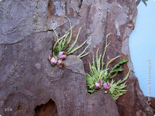 В последнее время увлеклась композициями из засушенных листьев. В лес хожу как в магазин. Попался кусочек сосновой коры, похожий на скалу. Получилась такая композиция - скалистый берег Валаама из летних впечатлений, прекрасное местечко. фото 4