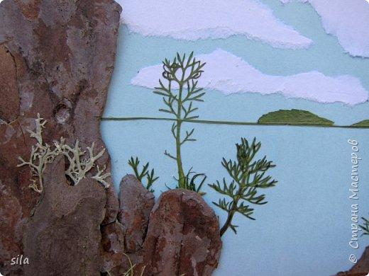 В последнее время увлеклась композициями из засушенных листьев. В лес хожу как в магазин. Попался кусочек сосновой коры, похожий на скалу. Получилась такая композиция - скалистый берег Валаама из летних впечатлений, прекрасное местечко. фото 5