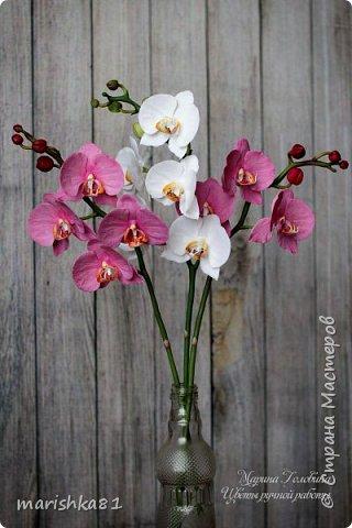 Веточки орхидеи фаленопсис. Выполнены вручную из флористической полимерной глины. фото 1