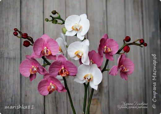 Веточки орхидеи фаленопсис. Выполнены вручную из флористической полимерной глины. фото 2