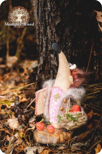 Ёж Огневик живет в лесу Шамана на болоте Цепких мхов. Любит бруснику и варить зелья. Всегда носит с собой книгу с рецептами и заклинаниями. фото 19