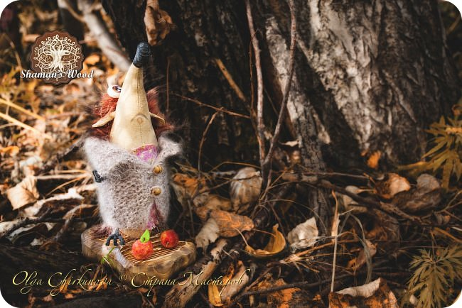 Ёж Огневик живет в лесу Шамана на болоте Цепких мхов. Любит бруснику и варить зелья. Всегда носит с собой книгу с рецептами и заклинаниями. фото 26