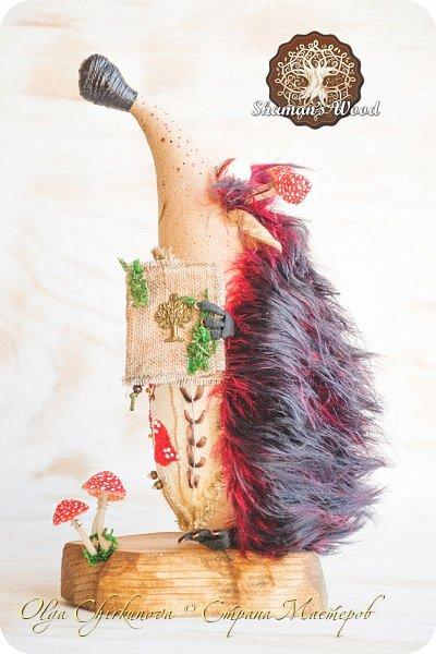 Ёж Огневик живет в лесу Шамана на болоте Цепких мхов. Любит бруснику и варить зелья. Всегда носит с собой книгу с рецептами и заклинаниями. фото 3