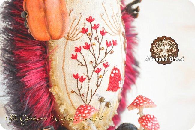 Ёж Огневик живет в лесу Шамана на болоте Цепких мхов. Любит бруснику и варить зелья. Всегда носит с собой книгу с рецептами и заклинаниями. фото 6