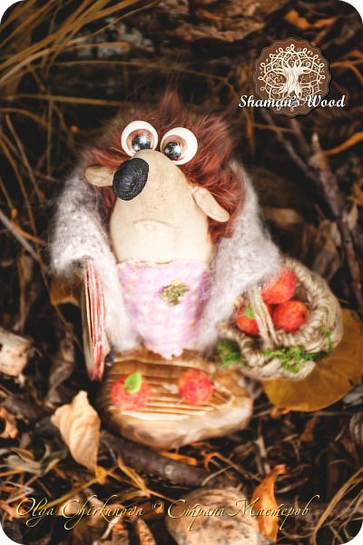 Ёж Огневик живет в лесу Шамана на болоте Цепких мхов. Любит бруснику и варить зелья. Всегда носит с собой книгу с рецептами и заклинаниями. фото 20