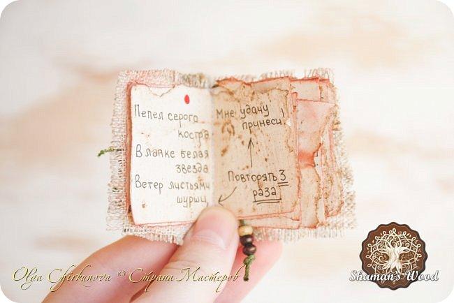 Ёж Огневик живет в лесу Шамана на болоте Цепких мхов. Любит бруснику и варить зелья. Всегда носит с собой книгу с рецептами и заклинаниями. фото 9