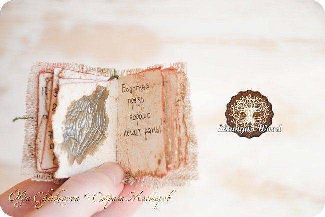 Ёж Огневик живет в лесу Шамана на болоте Цепких мхов. Любит бруснику и варить зелья. Всегда носит с собой книгу с рецептами и заклинаниями. фото 11