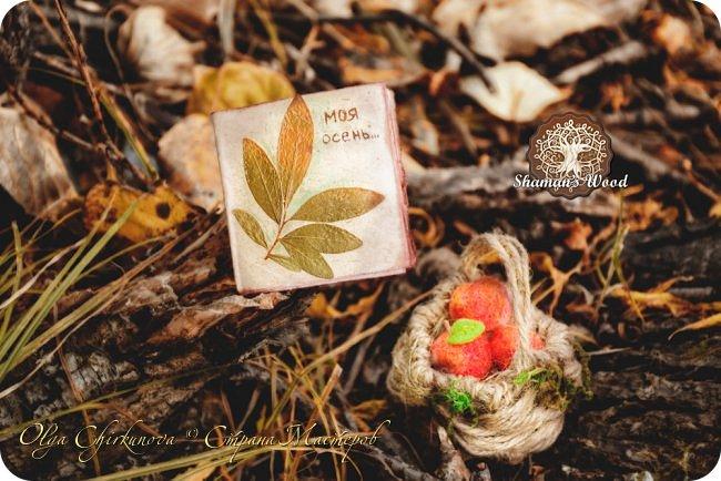 Ёж Огневик живет в лесу Шамана на болоте Цепких мхов. Любит бруснику и варить зелья. Всегда носит с собой книгу с рецептами и заклинаниями. фото 23