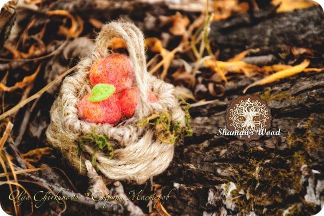 Ёж Огневик живет в лесу Шамана на болоте Цепких мхов. Любит бруснику и варить зелья. Всегда носит с собой книгу с рецептами и заклинаниями. фото 24