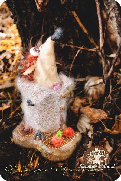 Ёж Огневик живет в лесу Шамана на болоте Цепких мхов. Любит бруснику и варить зелья. Всегда носит с собой книгу с рецептами и заклинаниями. фото 25