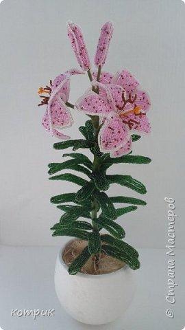Вот такая орхидея получилась у меня по Мастер классу Вербицкой Наталии....)))))Далеко от шедевра мастера,но тоже неплохо...вроде...)))))) фото 5