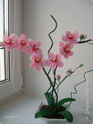 Вот такая орхидея получилась у меня по Мастер классу Вербицкой Наталии....)))))Далеко от шедевра мастера,но тоже неплохо...вроде...)))))) фото 1