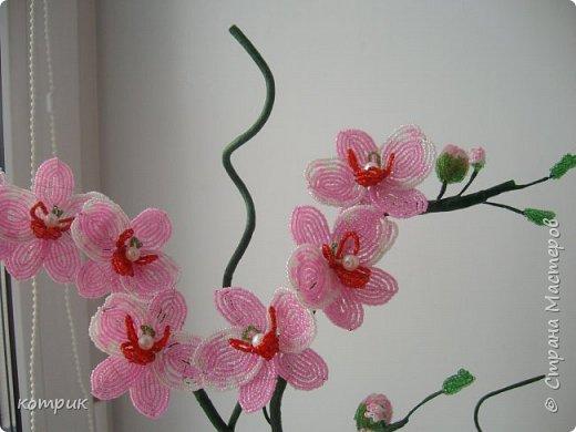 Вот такая орхидея получилась у меня по Мастер классу Вербицкой Наталии....)))))Далеко от шедевра мастера,но тоже неплохо...вроде...)))))) фото 3
