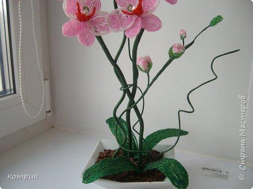 Вот такая орхидея получилась у меня по Мастер классу Вербицкой Наталии....)))))Далеко от шедевра мастера,но тоже неплохо...вроде...)))))) фото 4