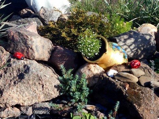 В последнее время стали очень популярны садовые композиции, разнообразные фантазийные клумбы из старых и ненужных вещей. И вот на садовых участках стали тут и там попадаться взору лебеди из автомобильных покрышек – старых шин. Вот и мы воспользовались одной из идей...и теперь у нас во дворе поселилась вот такая романтическая лебединая парочка!=) фото 16