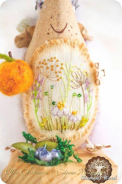 В моем лесу Шамана не только мальчишки-ежики живут, но и красавицы игольчатые!  Ежиха Брунгильда живет в лесу Шамана в роще Поющих раков. Она любит чай с чабрецом и варенье из апельсинов, которое привозит Морошич из дальних путешествий. Бруня дружит с прекрасной Лето и всегда ждет ее приезда. А бабочка…это подарок от доброй подруги, чтобы всегда в доме был зеленый сезон. Брунгильда будит бабочку зимними вечерами и просит рассказывать волшебные сны! фото 10
